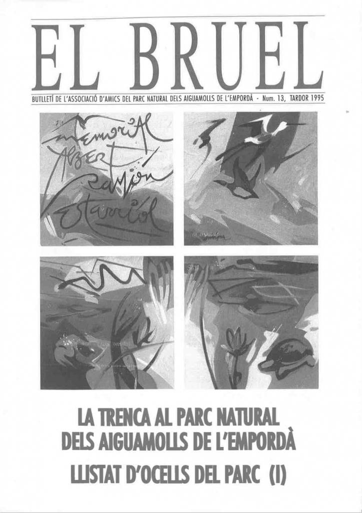 Bruel 13. Tardor 1995