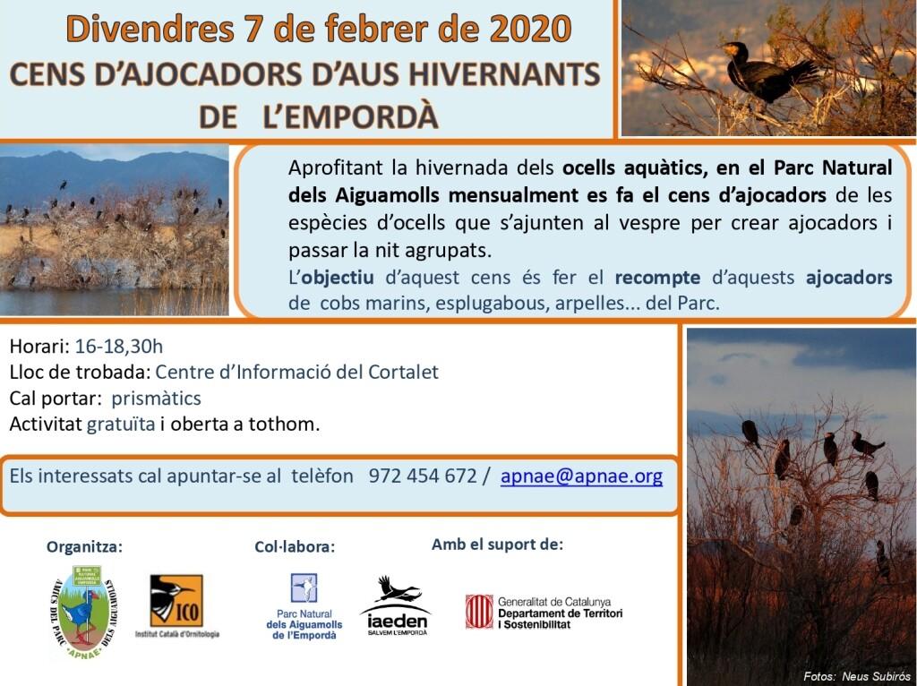 7 DE FEBRER – Cens ajocadors aus hivernants